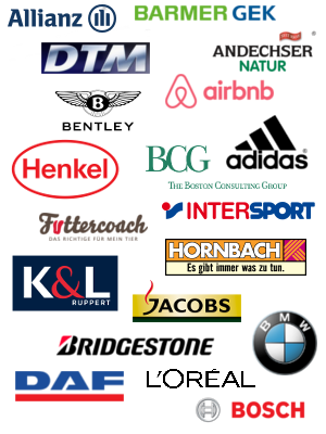 Brands Referenzen Earmotion